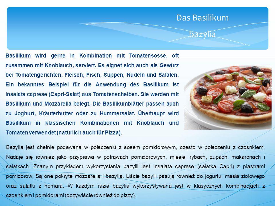 Das Basilikum bazylia Basilikum wird gerne in Kombination mit Tomatensosse, oft zusammen mit Knoblauch, serviert.