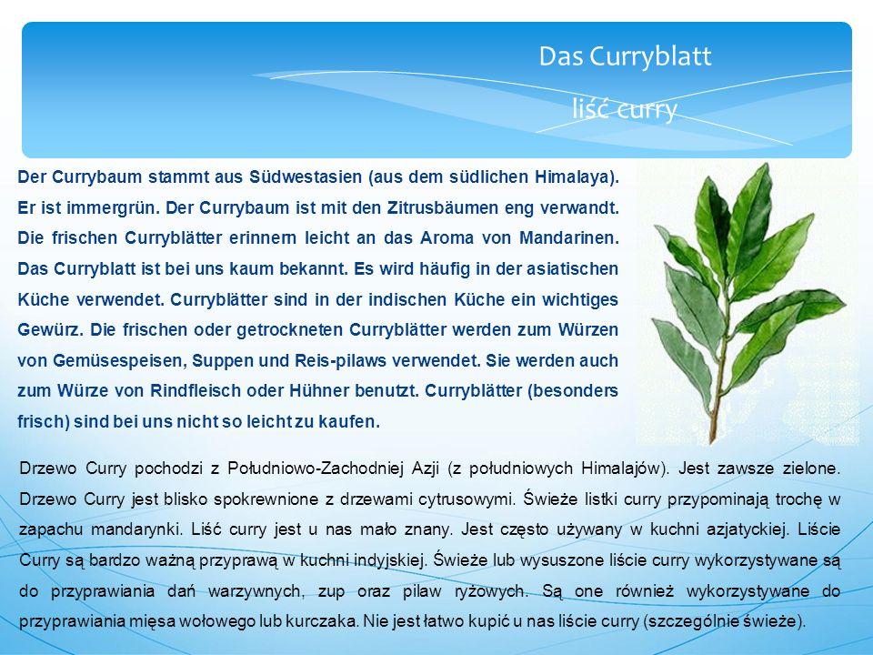 Das Curryblatt liść curry Der Currybaum stammt aus Südwestasien (aus dem südlichen Himalaya).