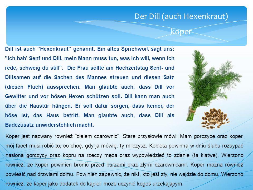 Der Dill (auch Hexenkraut) koper Dill ist auch Hexenkraut genannt.