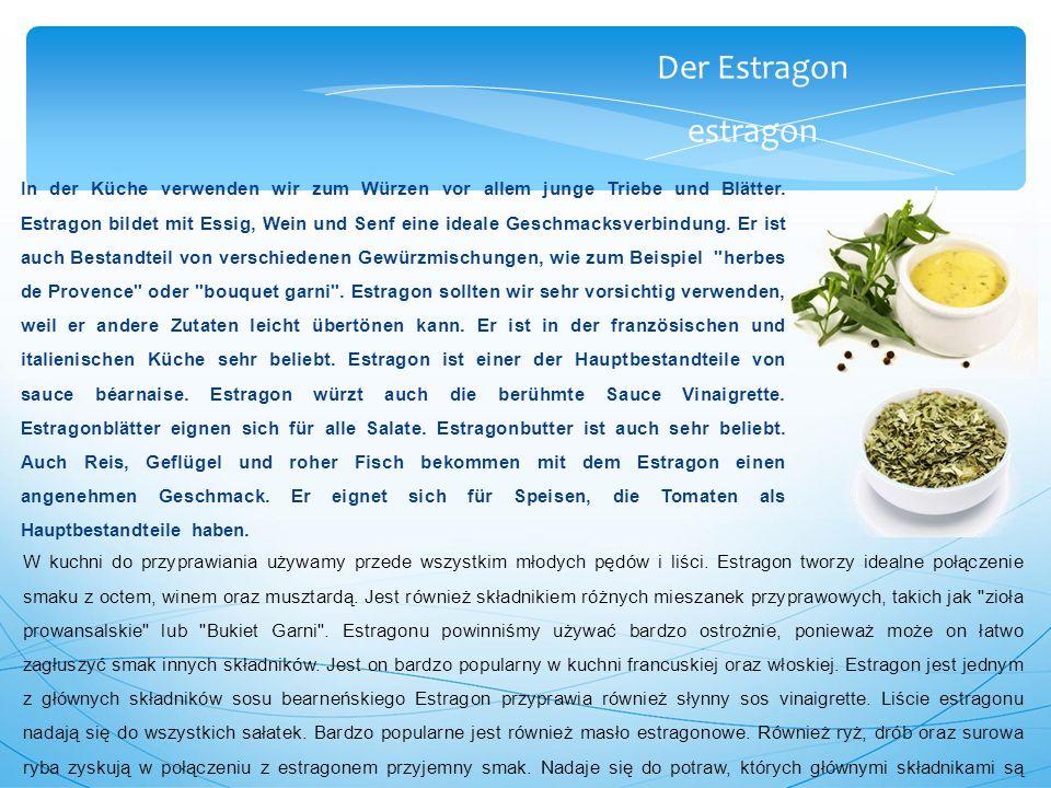 Der Estragon estragon In der Küche verwenden wir zum Würzen vor allem junge Triebe und Blätter.