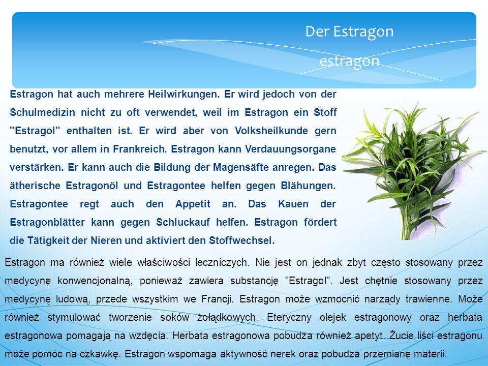 Der Estragon estragon Estragon hat auch mehrere Heilwirkungen.