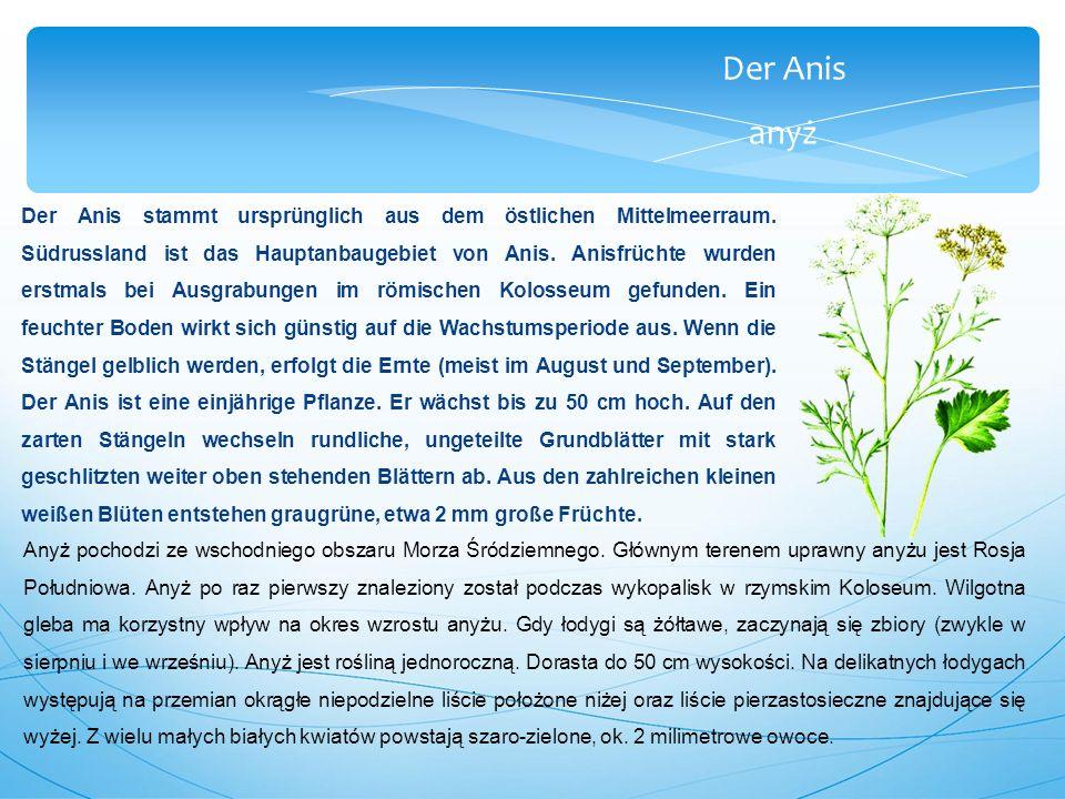 Der Anis anyż Der Anis stammt ursprünglich aus dem östlichen Mittelmeerraum.