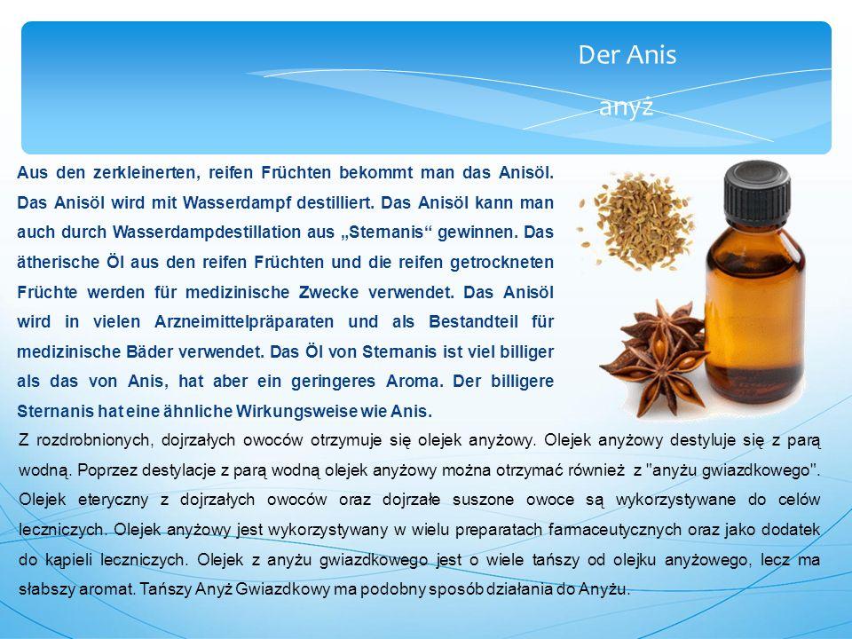 Der Anis anyż Aus den zerkleinerten, reifen Früchten bekommt man das Anisöl.