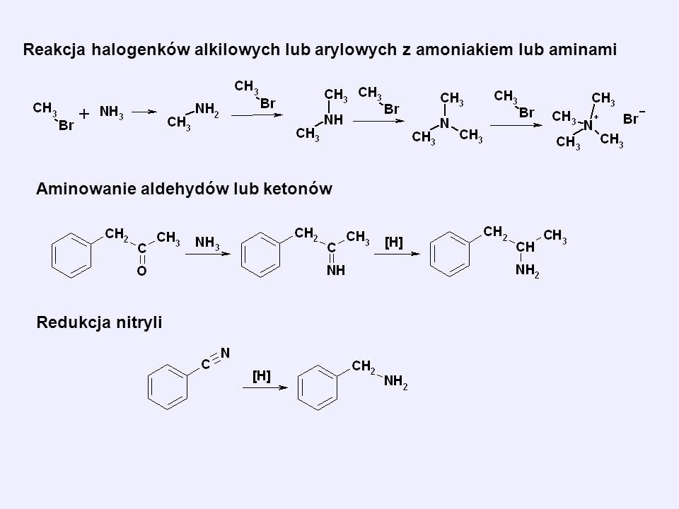 Reakcja halogenków alkilowych lub arylowych z amoniakiem lub aminami Aminowanie aldehydów lub ketonów Redukcja nitryli