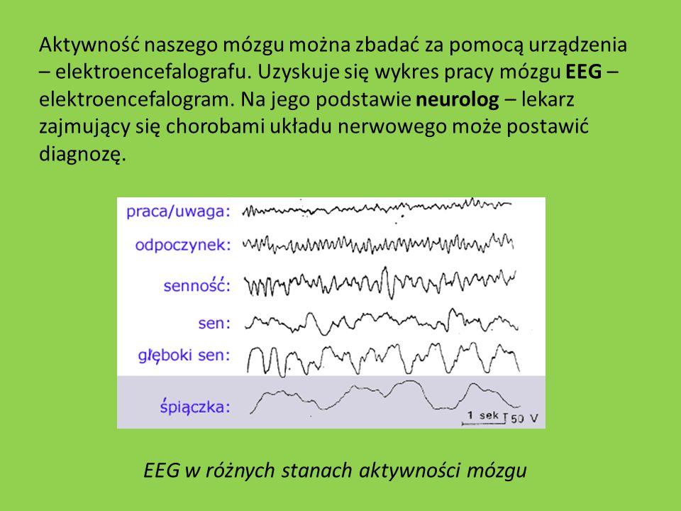 Aktywność naszego mózgu można zbadać za pomocą urządzenia – elektroencefalografu. Uzyskuje się wykres pracy mózgu EEG – elektroencefalogram. Na jego p