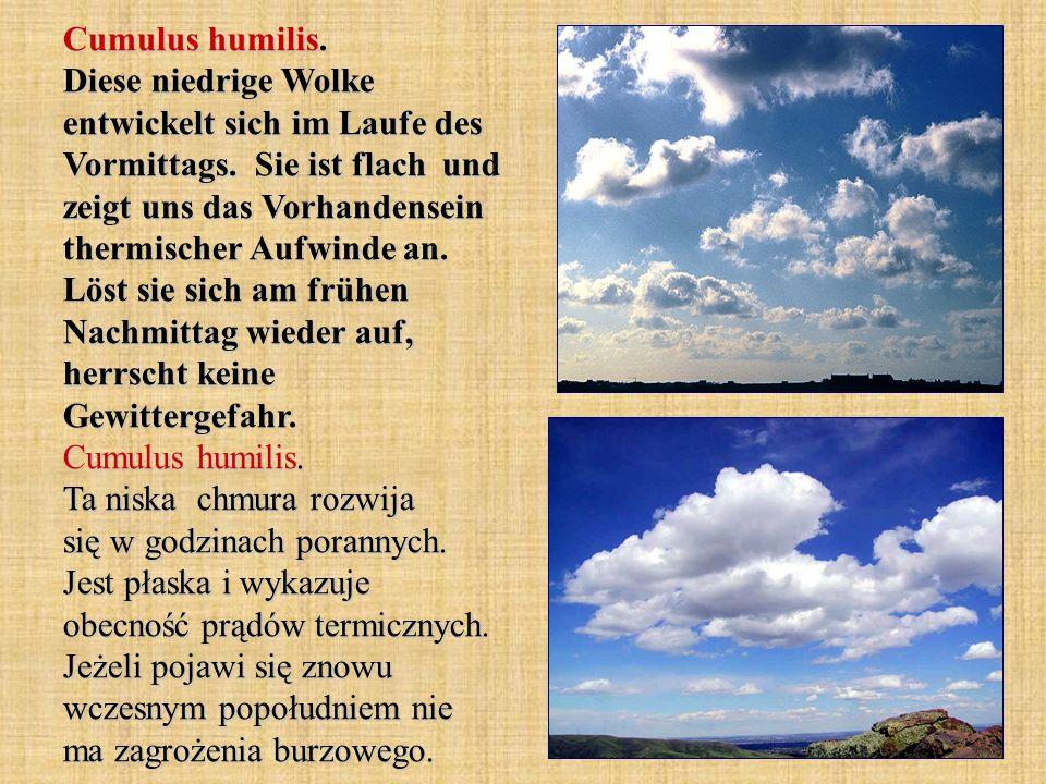 Cumulus humilis. Diese niedrige Wolke entwickelt sich im Laufe des Vormittags. Sie ist flach und zeigt uns das Vorhandensein thermischer Aufwinde an.