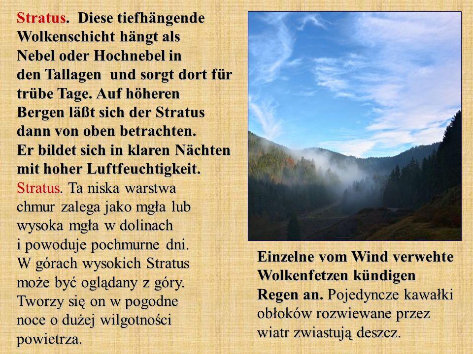 Stratus. Diese tiefhängende Wolkenschicht hängt als Nebel oder Hochnebel in den Tallagen und sorgt dort für trübe Tage. Auf höheren Bergen läßt sich d