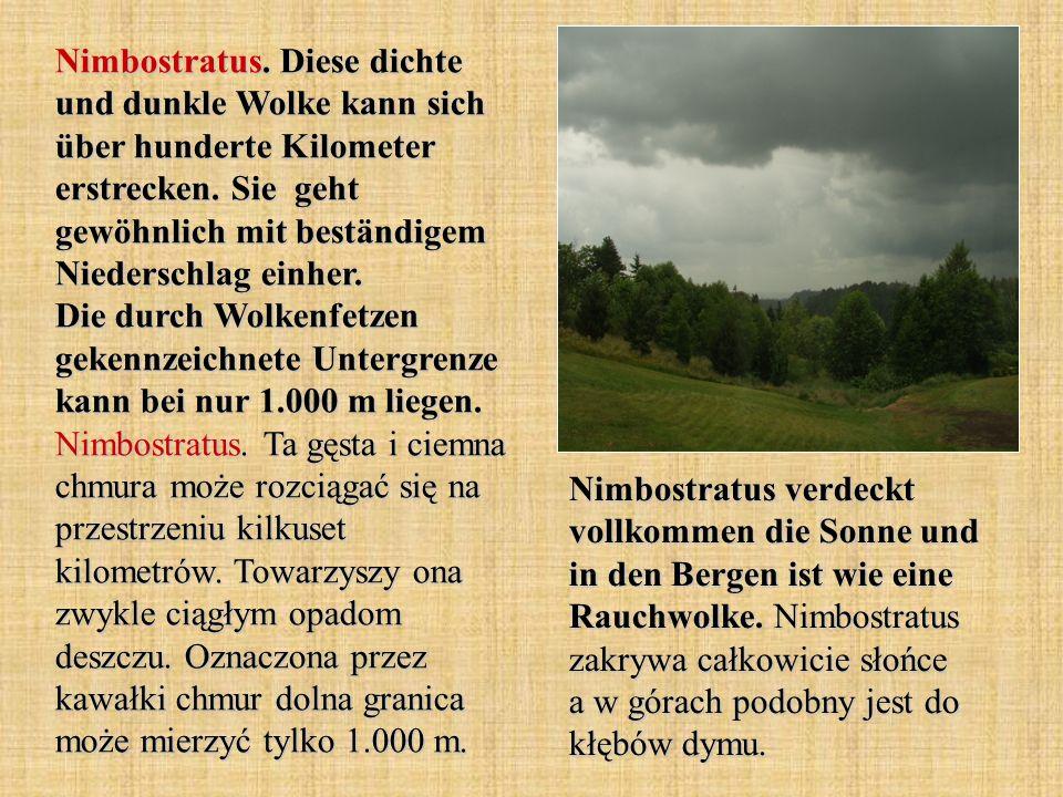 Nimbostratus. Diese dichte und dunkle Wolke kann sich über hunderte Kilometer erstrecken. Sie geht gewöhnlich mit beständigem Niederschlag einher. Die