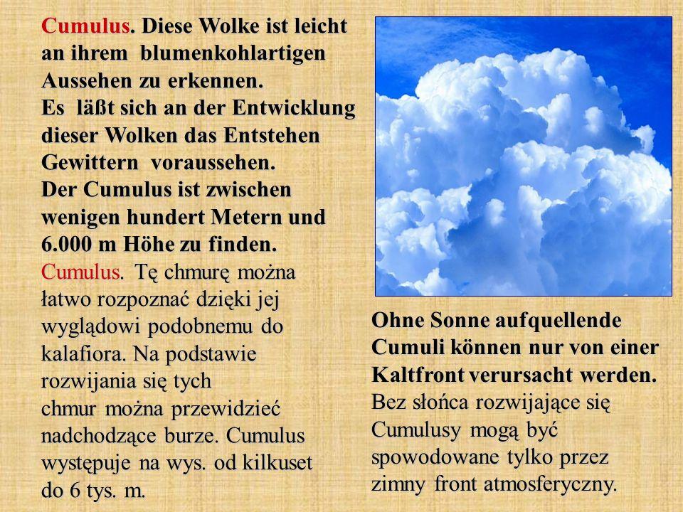 Cumulus. Diese Wolke ist leicht an ihrem blumenkohlartigen Aussehen zu erkennen. Es läßt sich an der Entwicklung dieser Wolken das Entstehen Gewittern