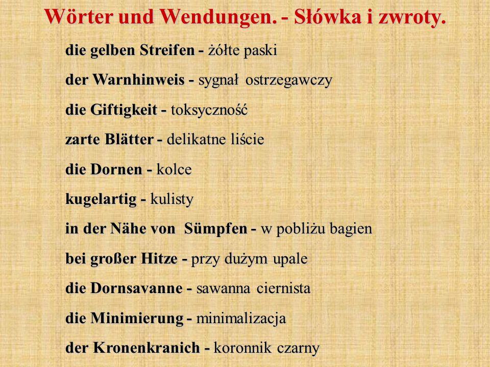 die gelben Streifen - żółte paski der Warnhinweis - sygnał ostrzegawczy die Giftigkeit - toksyczność zarte Blätter - delikatne liście die Dornen - kol