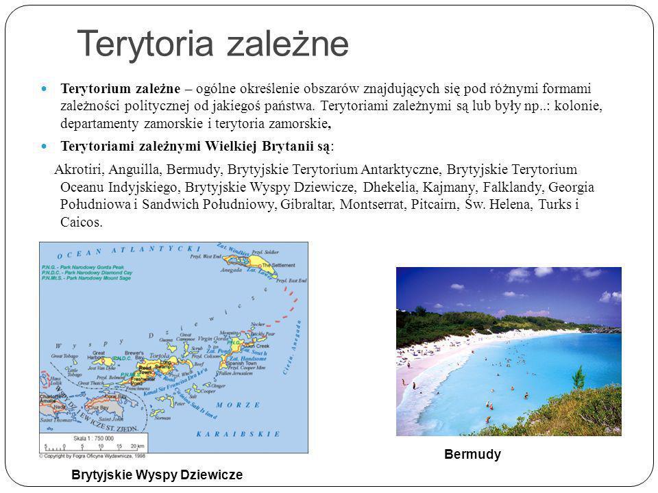Terytoria zależne Terytorium zależne – ogólne określenie obszarów znajdujących się pod różnymi formami zależności politycznej od jakiegoś państwa.