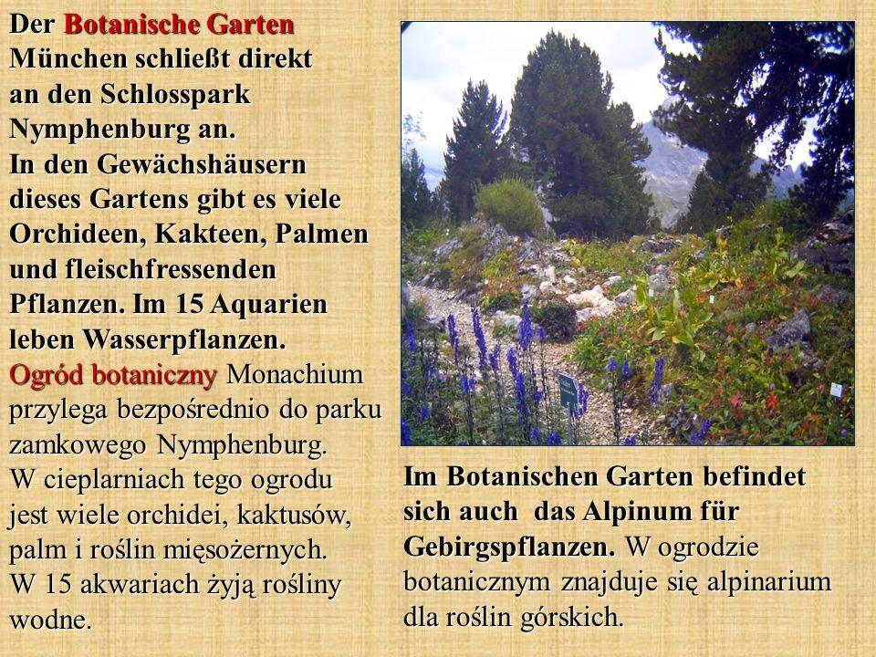 Im Botanischen Garten befindet sich auch das Alpinum für Gebirgspflanzen. W ogrodzie botanicznym znajduje się alpinarium dla roślin górskich. Der Bota