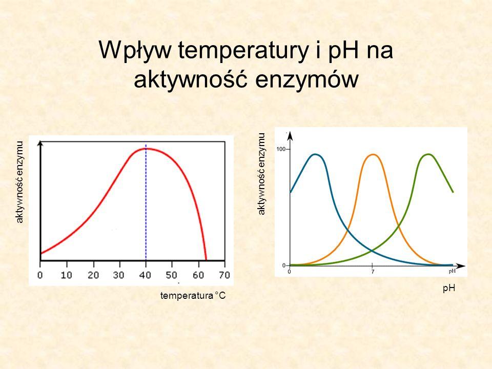 Wpływ temperatury i pH na aktywność enzymów temperatura °C aktywność enzymu pH