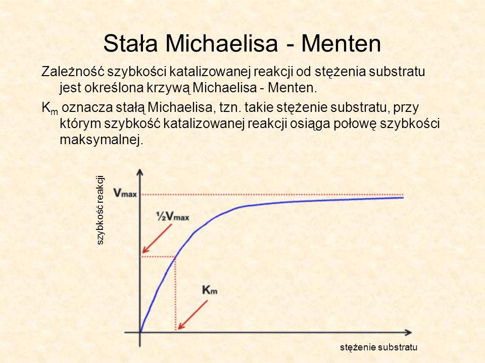 Stała Michaelisa - Menten Zależność szybkości katalizowanej reakcji od stężenia substratu jest określona krzywą Michaelisa - Menten.