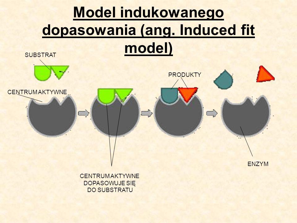 Czynniki wpływające na czynność enzymów Wymienia się kilka determinant aktywności metabolicznej enzymów: obecność inhibitorów temperatura pH środowiska utrwalacze stężenie reagujących składników Pewne reakcje enzymatyczne wymagają obecności tzw.