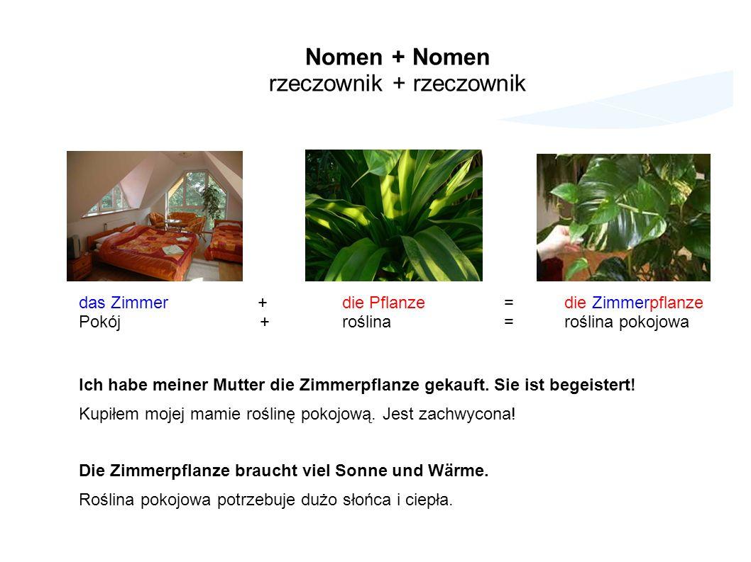 das Zimmer + die Pflanze =die Zimmerpflanze Pokój + roślina =roślina pokojowa Ich habe meiner Mutter die Zimmerpflanze gekauft.