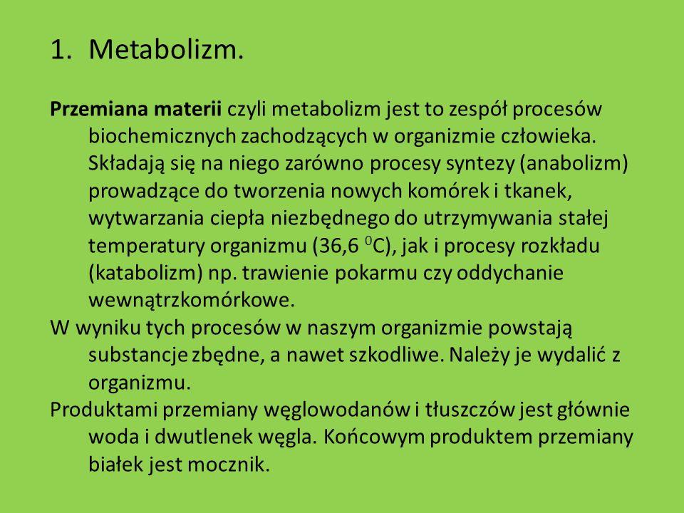 1.Metabolizm.