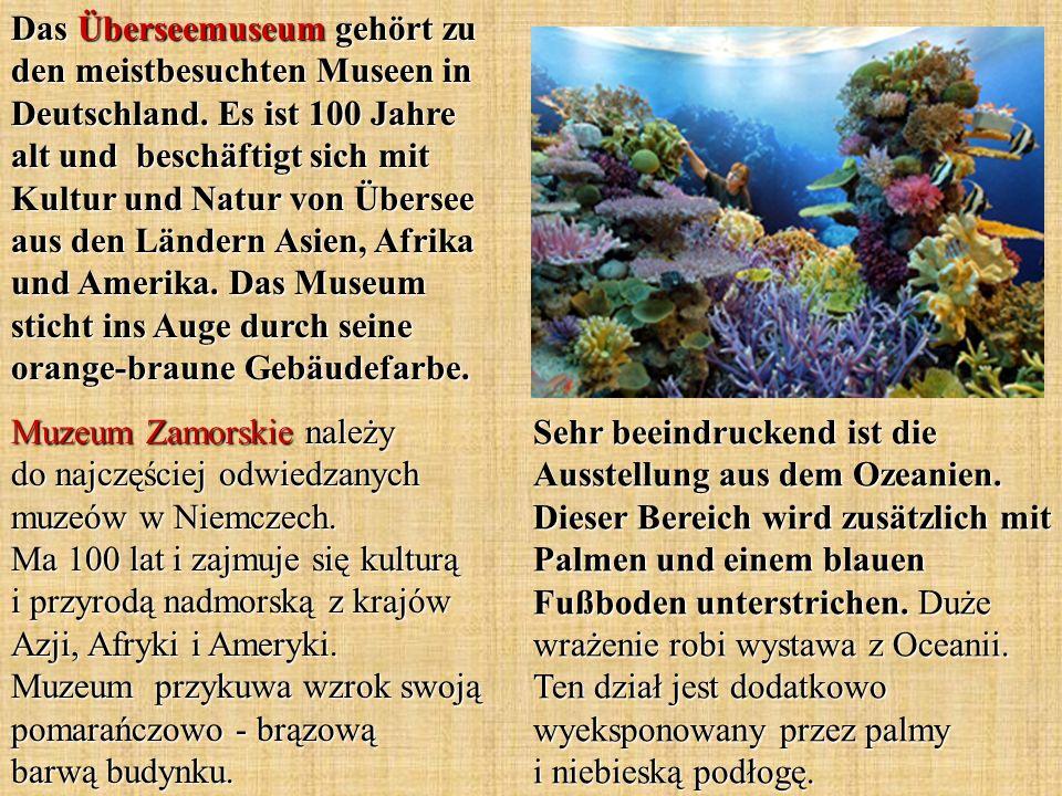 Sehr beeindruckend ist die Ausstellung aus dem Ozeanien. Dieser Bereich wird zusätzlich mit Palmen und einem blauen Fußboden unterstrichen. Duże wraże