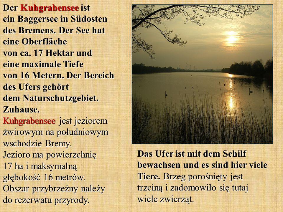 Der Kuhgrabensee ist ein Baggersee in Südosten des Bremens. Der See hat eine Oberfläche von ca. 17 Hektar und eine maximale Tiefe von 16 Metern. Der B