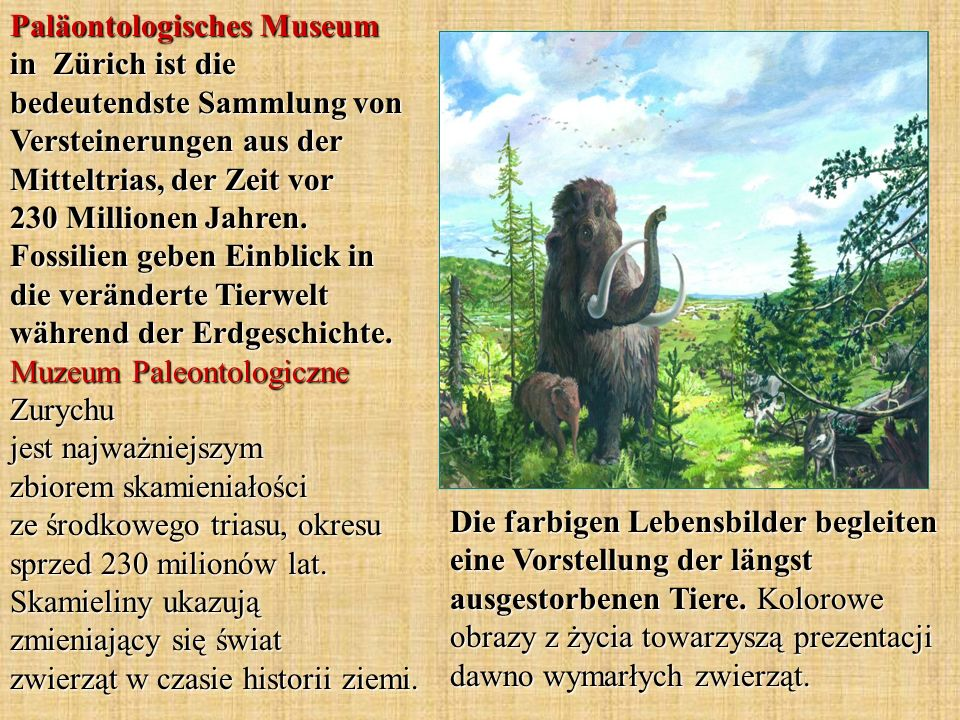 Die farbigen Lebensbilder begleiten eine Vorstellung der längst ausgestorbenen Tiere.