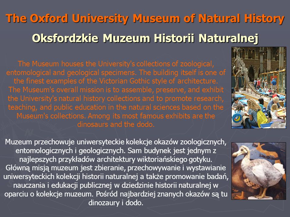The Oxford University Museum of Natural History Oksfordzkie Muzeum Historii Naturalnej The Museum houses the University's collections of zoological, e