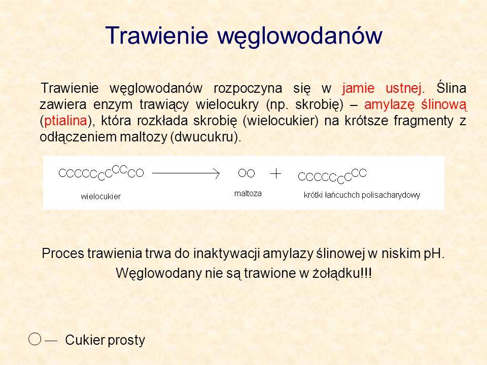 Trawienie węglowodanów Trawienie węglowodanów rozpoczyna się w jamie ustnej. Ślina zawiera enzym trawiący wielocukry (np. skrobię) – amylazę ślinową (