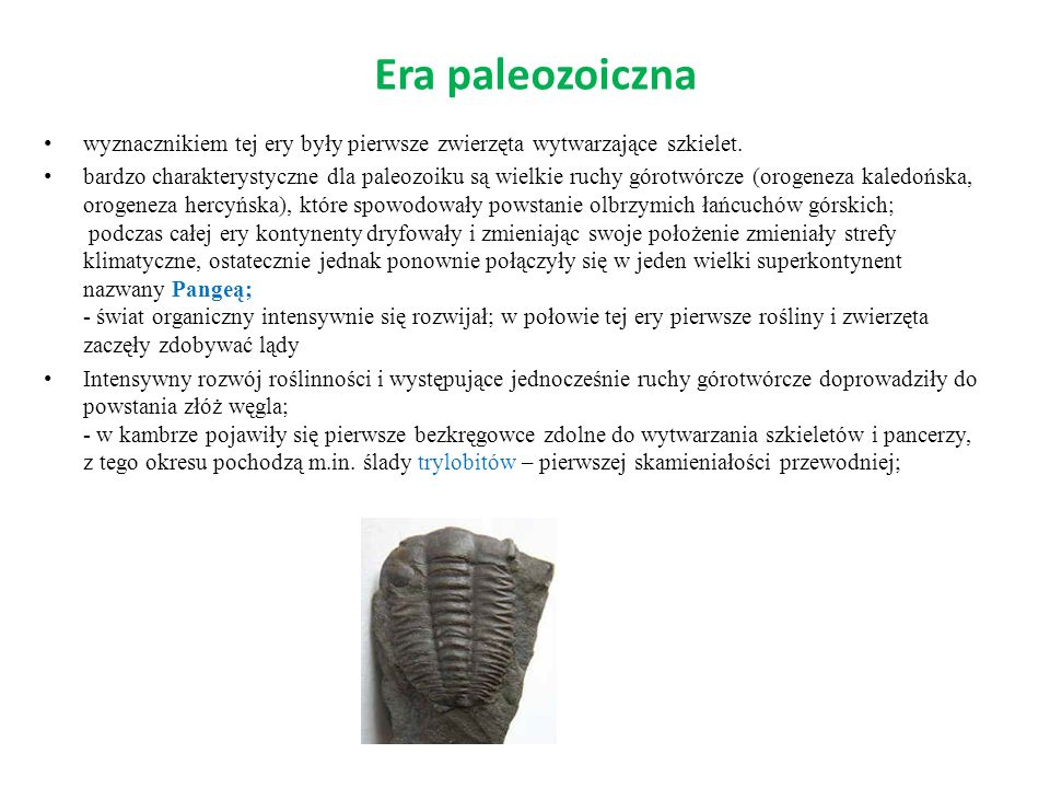 Era paleozoiczna wyznacznikiem tej ery były pierwsze zwierzęta wytwarzające szkielet. bardzo charakterystyczne dla paleozoiku są wielkie ruchy górotwó