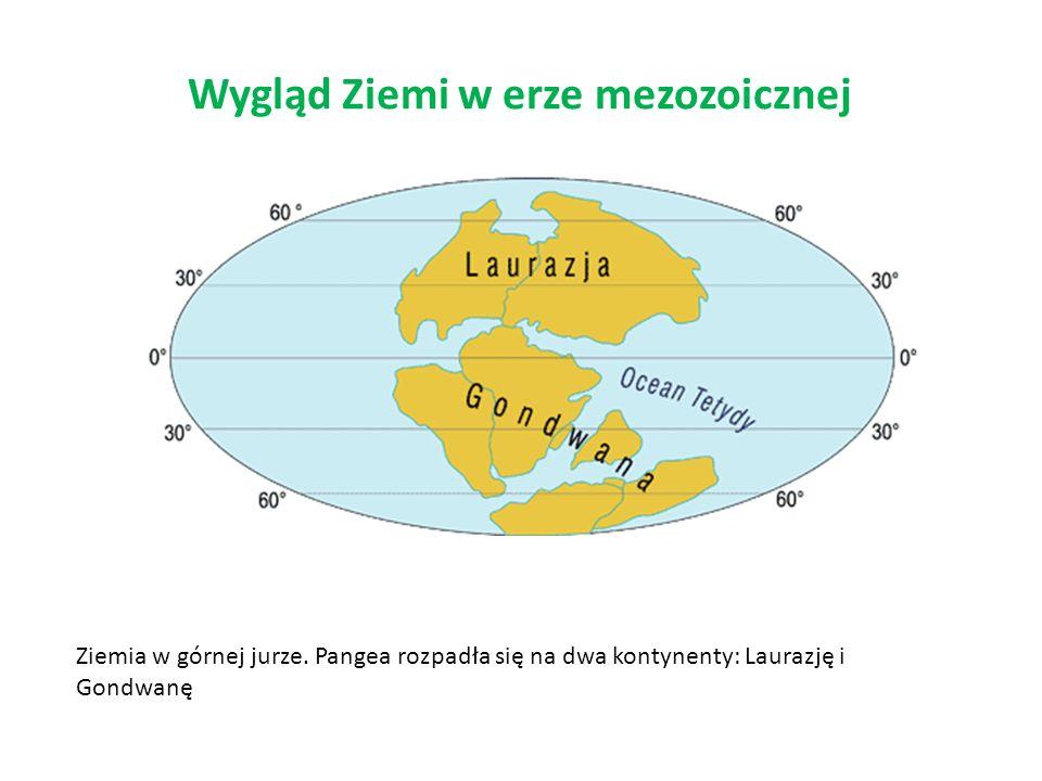 Wygląd Ziemi w erze mezozoicznej Ziemia w górnej jurze. Pangea rozpadła się na dwa kontynenty: Laurazję i Gondwanę