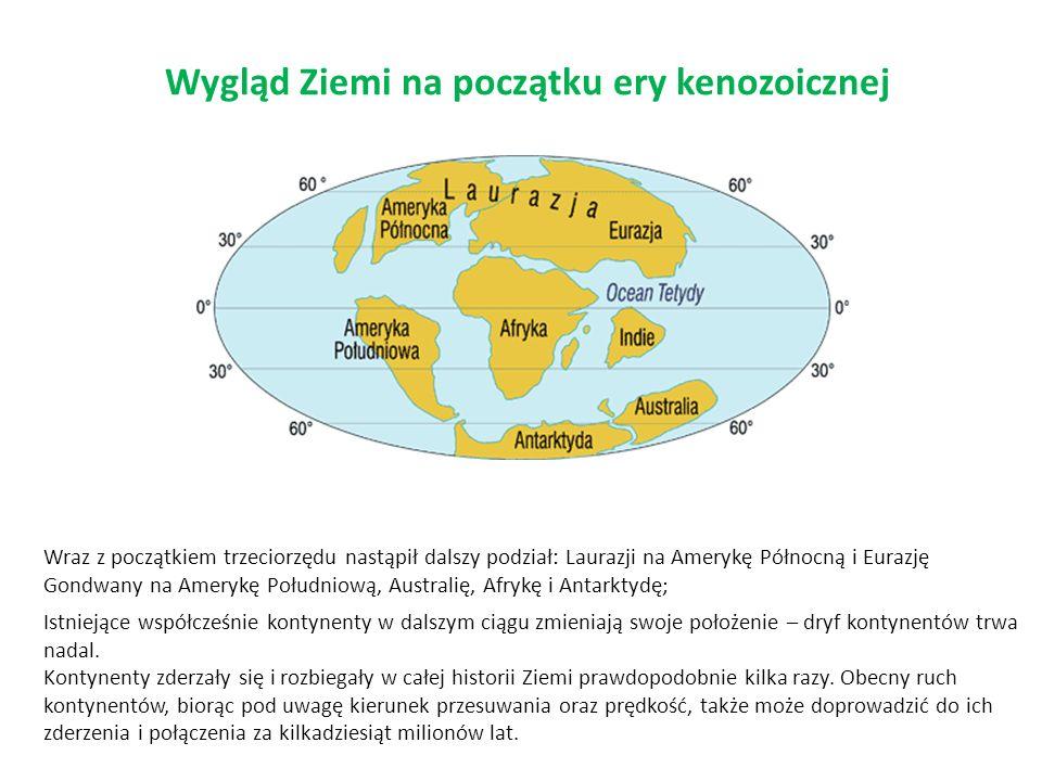 Wygląd Ziemi na początku ery kenozoicznej Istniejące współcześnie kontynenty w dalszym ciągu zmieniają swoje położenie – dryf kontynentów trwa nadal.