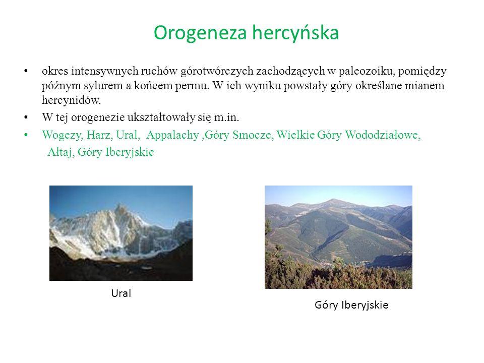 Orogeneza hercyńska okres intensywnych ruchów górotwórczych zachodzących w paleozoiku, pomiędzy późnym sylurem a końcem permu. W ich wyniku powstały g