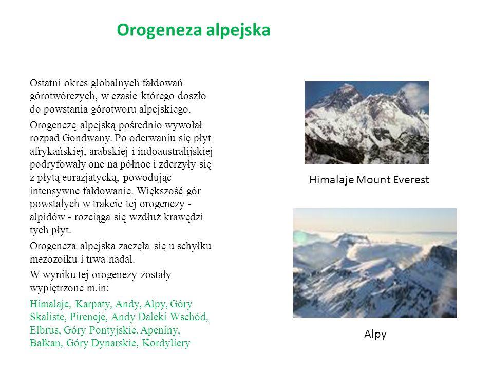 Orogeneza alpejska Ostatni okres globalnych fałdowań górotwórczych, w czasie którego doszło do powstania górotworu alpejskiego. Orogenezę alpejską poś
