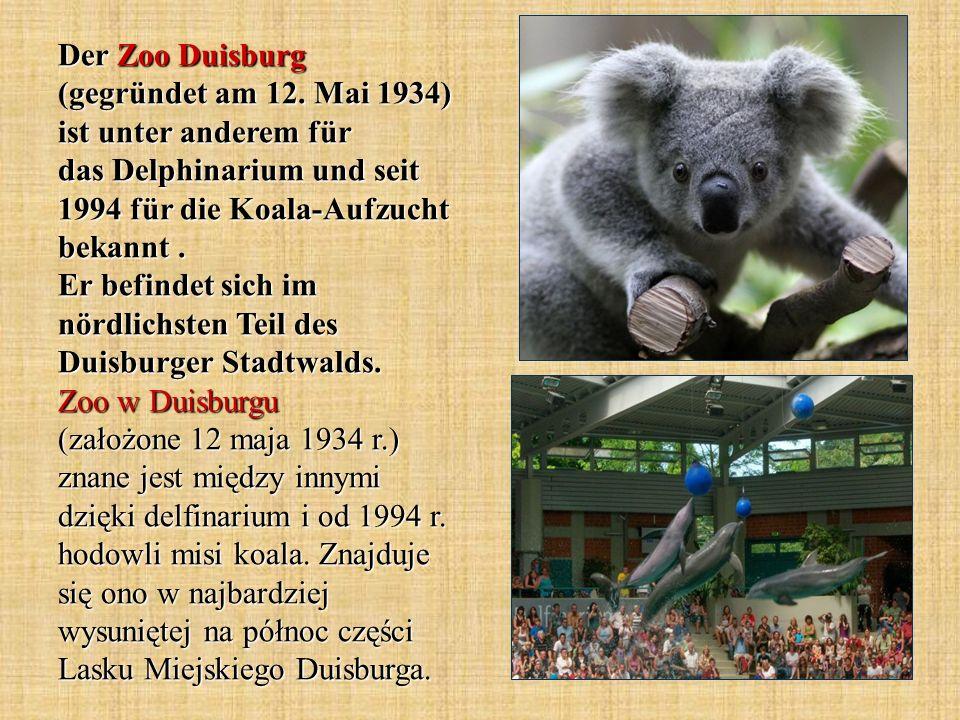 Der Zoo Duisburg (gegründet am 12. Mai 1934) ist unter anderem für das Delphinarium und seit 1994 für die Koala-Aufzucht bekannt. Er befindet sich im