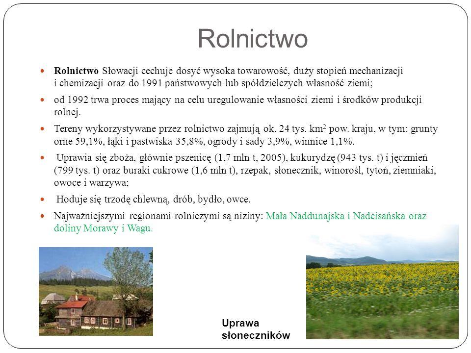 Rolnictwo Rolnictwo Słowacji cechuje dosyć wysoka towarowość, duży stopień mechanizacji i chemizacji oraz do 1991 państwowych lub spółdzielczych własność ziemi; od 1992 trwa proces mający na celu uregulowanie własności ziemi i środków produkcji rolnej.