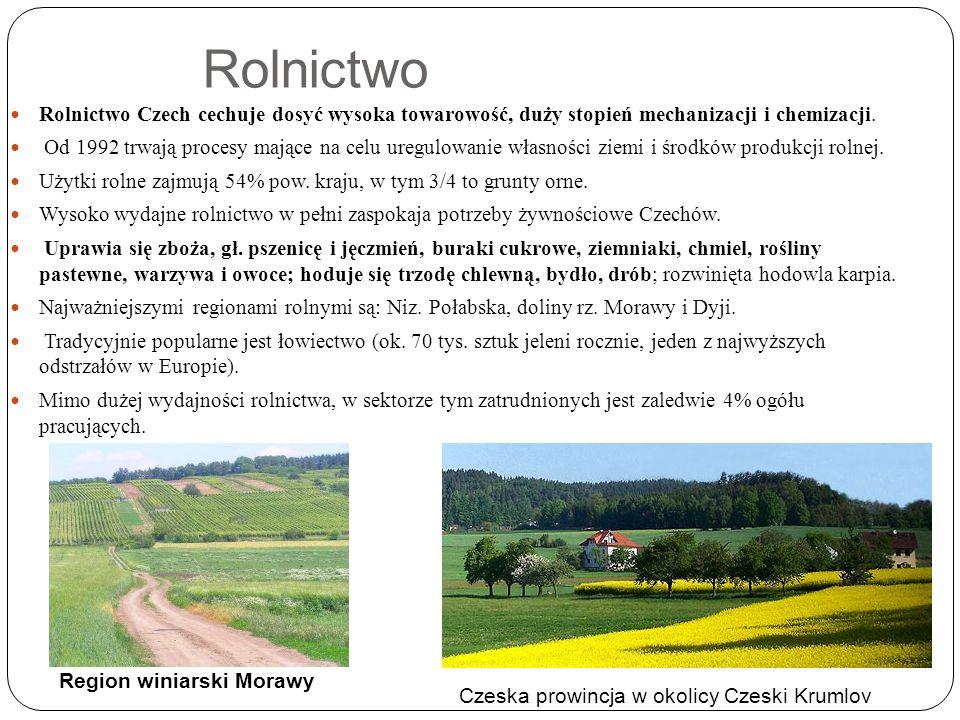 Rolnictwo Rolnictwo Czech cechuje dosyć wysoka towarowość, duży stopień mechanizacji i chemizacji.