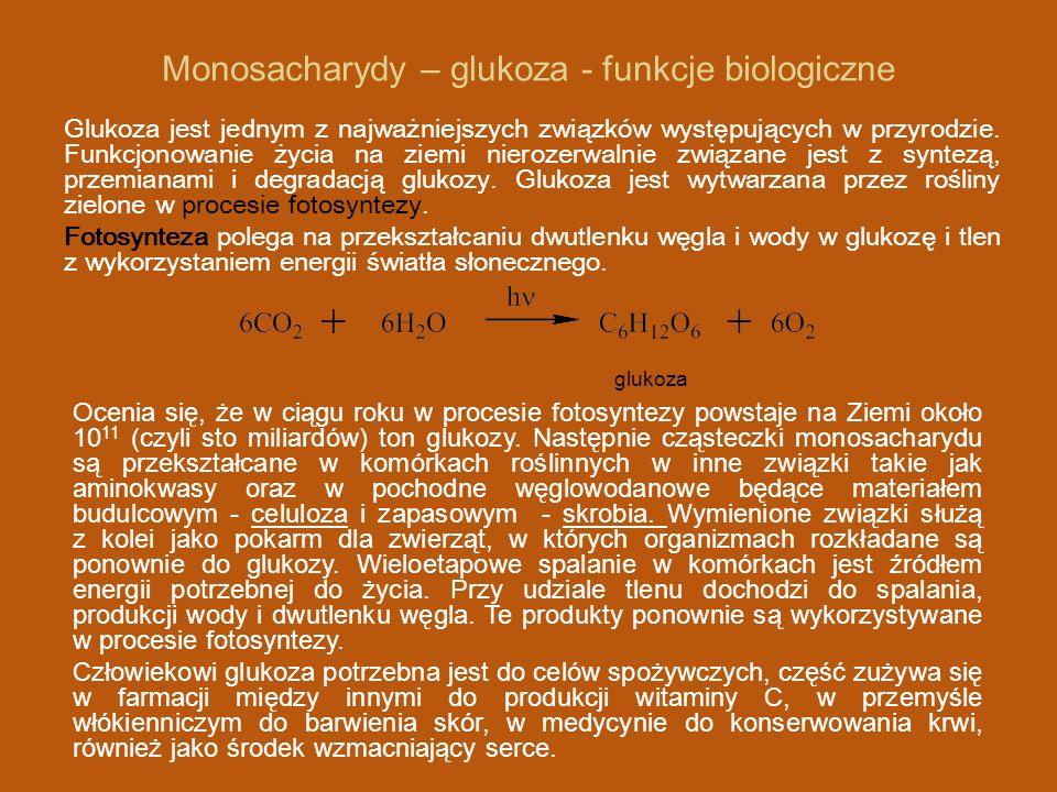 Monosacharydy – glukoza - funkcje biologiczne Glukoza jest jednym z najważniejszych związków występujących w przyrodzie.