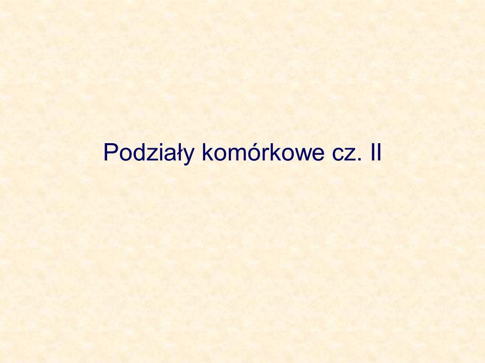 Podziały komórkowe cz. II