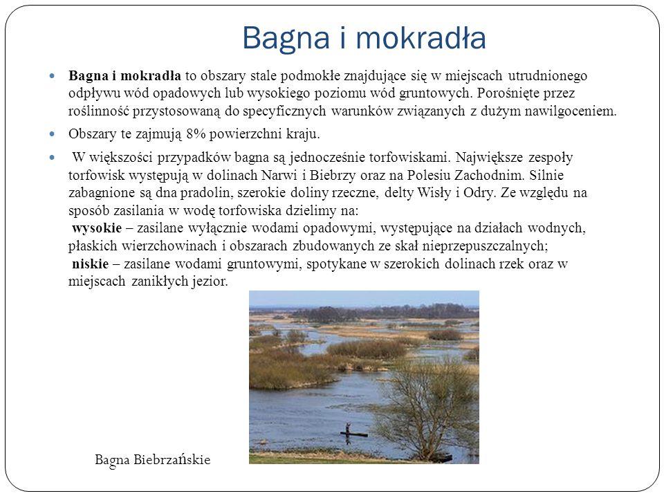 Bagna i mokradła Bagna i mokradła to obszary stale podmokłe znajdujące się w miejscach utrudnionego odpływu wód opadowych lub wysokiego poziomu wód gr