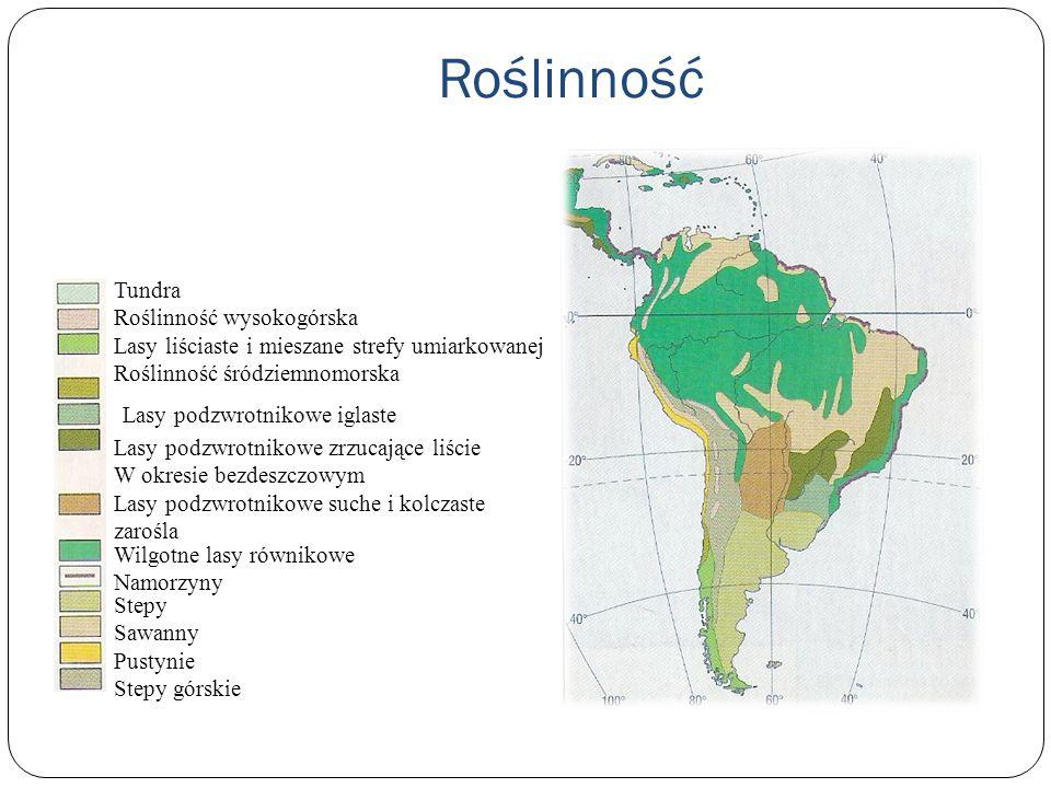 Roślinność Tundra Roślinność wysokogórska Lasy liściaste i mieszane strefy umiarkowanej Roślinność śródziemnomorska Lasy podzwrotnikowe iglaste Lasy p