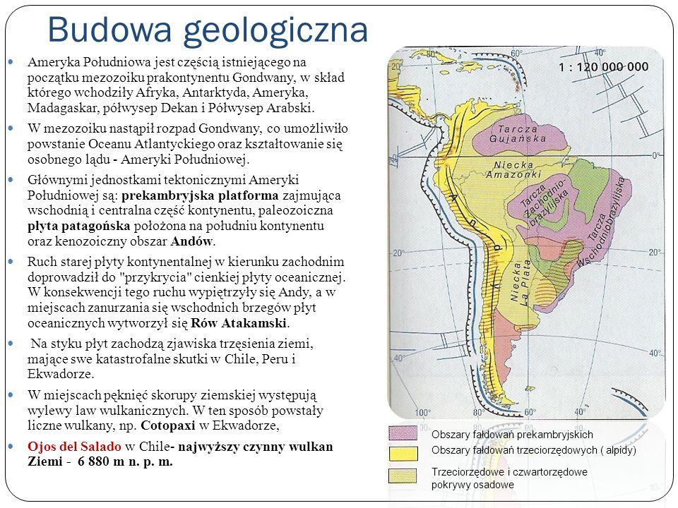 Budowa geologiczna Ameryka Południowa jest częścią istniejącego na początku mezozoiku prakontynentu Gondwany, w skład którego wchodziły Afryka, Antark