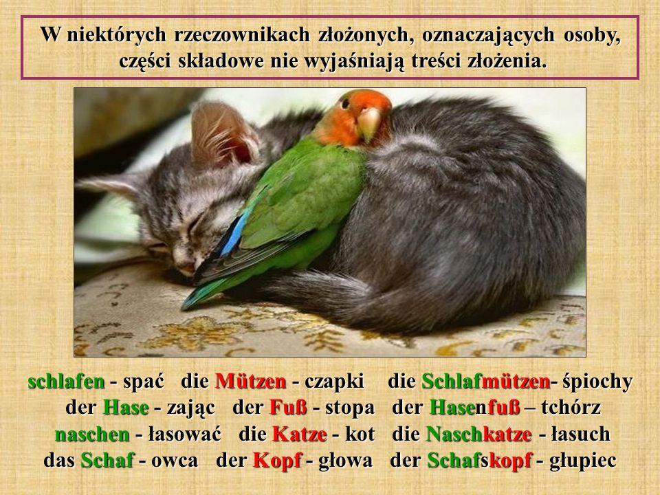 W niektórych rzeczownikach złożonych, oznaczających osoby, części składowe nie wyjaśniają treści złożenia. schlafen - spać die Mützen - czapki die Sch