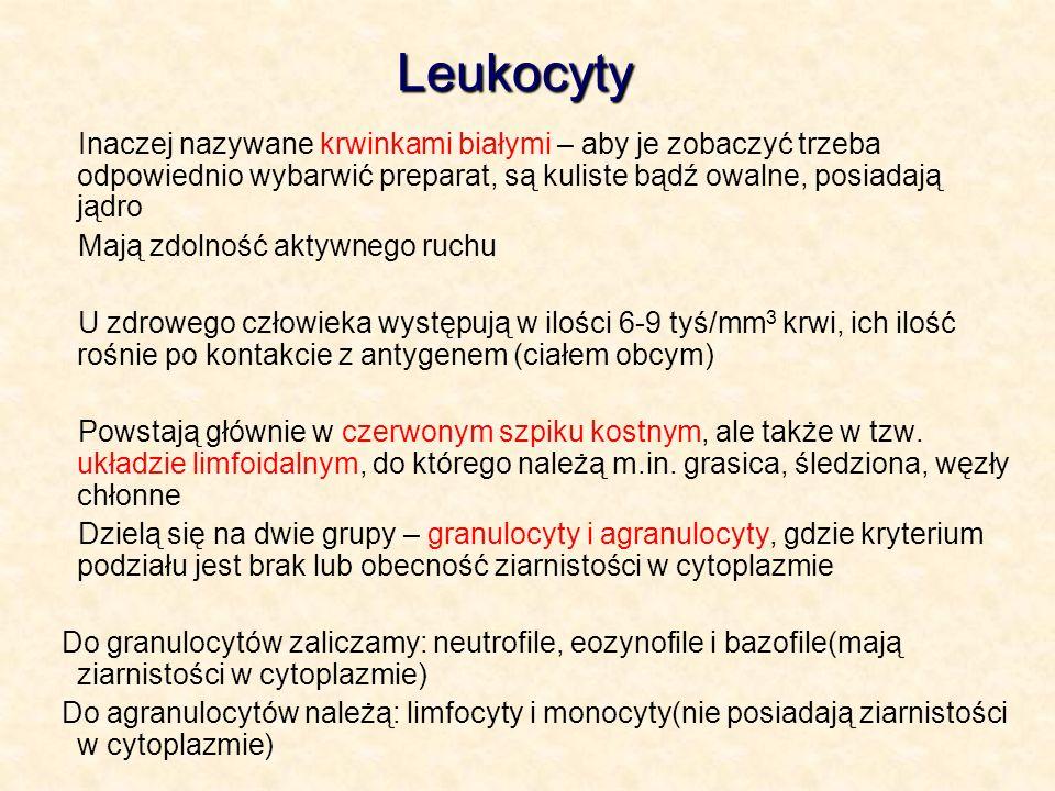 Leukocyty Inaczej nazywane krwinkami białymi – aby je zobaczyć trzeba odpowiednio wybarwić preparat, są kuliste bądź owalne, posiadają jądro Mają zdol