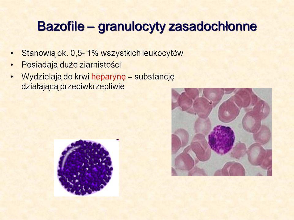 Bazofile – granulocyty zasadochłonne Stanowią ok. 0,5- 1% wszystkich leukocytów Posiadają duże ziarnistości Wydzielają do krwi heparynę – substancję d