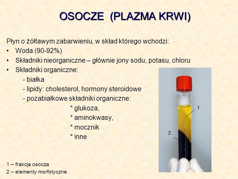 OSOCZE (PLAZMA KRWI) Płyn o żółtawym zabarwieniu, w skład którego wchodzi: Woda (90-92%) Składniki nieorganiczne – głównie jony sodu, potasu, chloru S