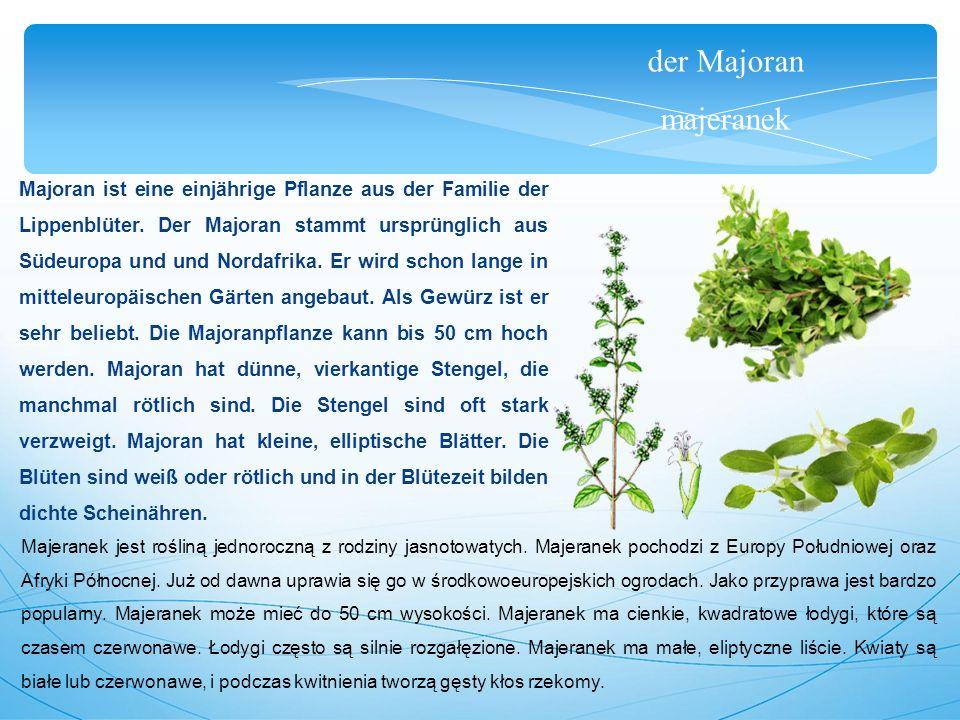 der Majoran majeranek Majoran ist eine einjährige Pflanze aus der Familie der Lippenblüter.