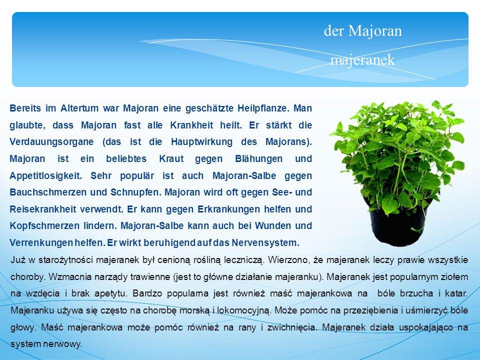 der Majoran majeranek Bereits im Altertum war Majoran eine geschätzte Heilpflanze.