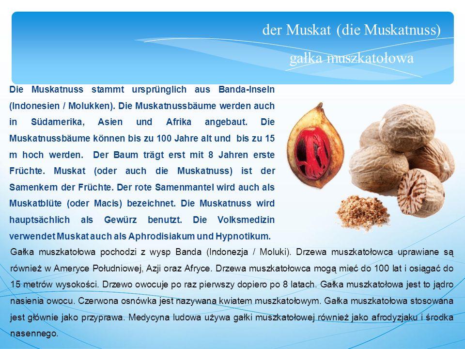 der Muskat (die Muskatnuss) gałka muszkatołowa Die Muskatnuss stammt ursprünglich aus Banda-Inseln (Indonesien / Molukken).