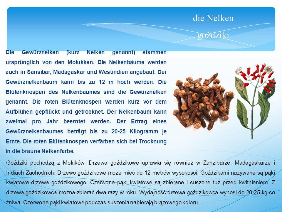 die Nelken goździki Die Gewürznelken (kurz Nelken genannt) stammen ursprünglich von den Molukken.