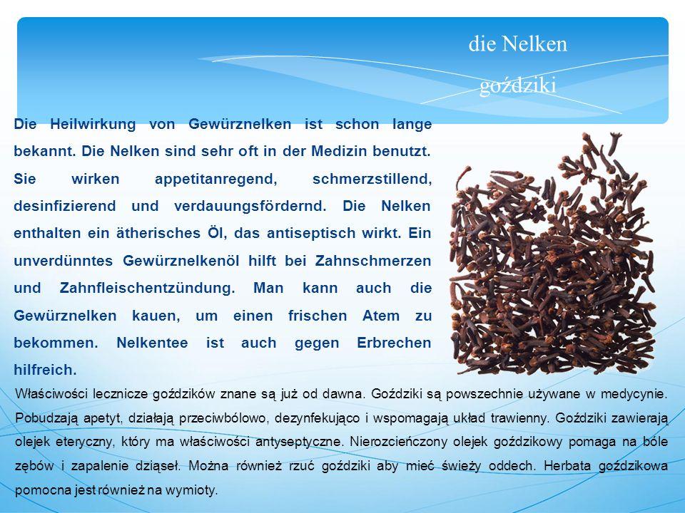 die Nelken goździki Die Heilwirkung von Gewürznelken ist schon lange bekannt.