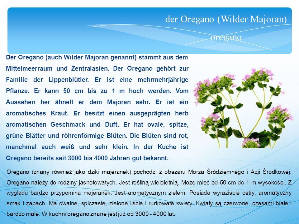 der Oregano (Wilder Majoran) oregano Der Oregano (auch Wilder Majoran genannt) stammt aus dem Mittelmeerraum und Zentralasien.
