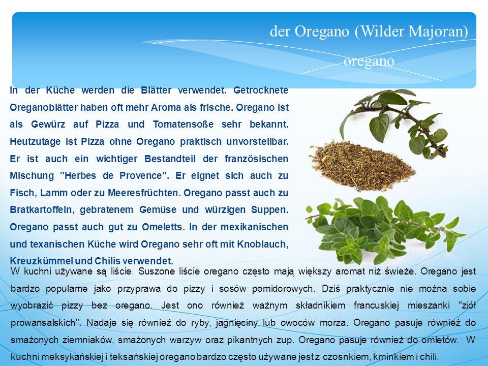 der Oregano (Wilder Majoran) oregano In der Küche werden die Blätter verwendet.
